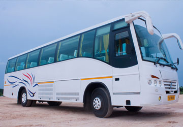 31 Seater Coach Hire Service